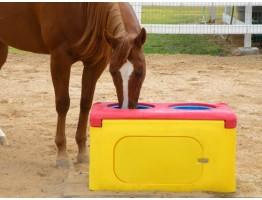 Потребности лошадей в воде