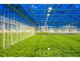 Альтернативные сооружения для выращивания растений