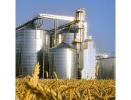 Альтернативы хранения зерна: экономическое сравнение