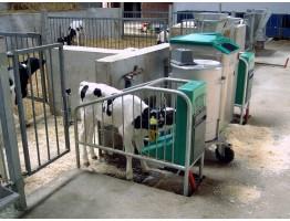 Технология точного молочного хозяйства: Автоматизированные кормушки для телят