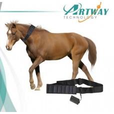 GPS треккер для лошадей и крс