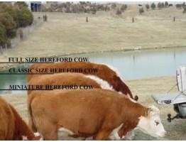 Взаимосвязь веса коровы, удойности и потребности в питательных ве-ществах