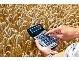 Стратегии фермерского бизнеса